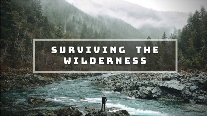 Surviving the Wilderness